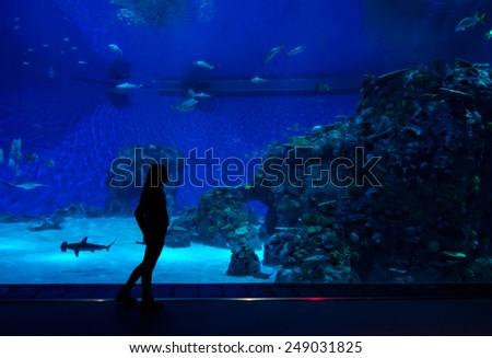 Teenager in front of big aquarium - stock photo