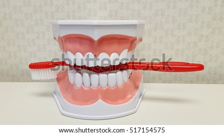 teeth biting on red toothbrush