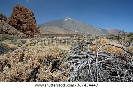Teide National Park Roques de Garcia in Tenerife, Canary Islands - stock photo