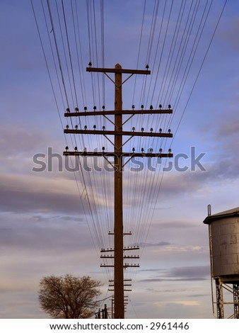 Telegraph lines and poles - stock photo