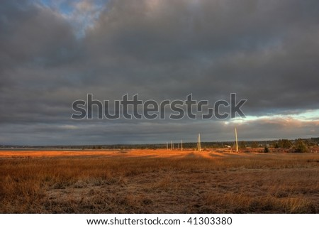 Telephone poles in a salt marsh