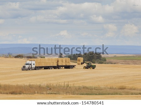 Telephoto of farmers stacking hay bales in east Idaho taken during September harvest season. - stock photo