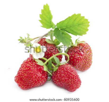 Tempting strawberries with leaves and flower. - stock photo