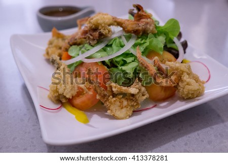 tempura with green salad and tomato sauce, selective focus - stock photo