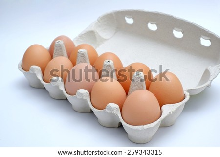 ten eggs in carton package closeup of eggs in a box eggs package - stock photo