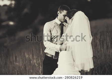 tender couple is hugging in the herbs on the background forest - stock photo