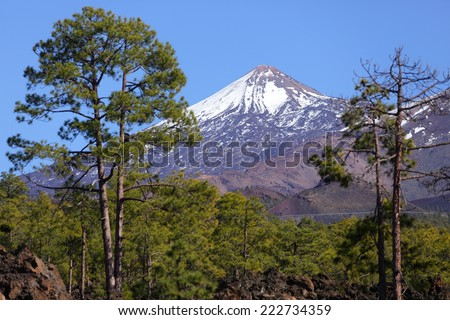 Tenerife - Teide volcano landscape. Beautiful nature scenery from Teide national park, Canary Islands, Spain. - stock photo