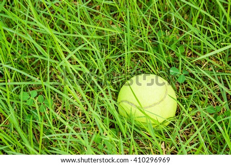 Tennis ball in overgrown green grass