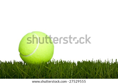 Tennis ball lays on a grass (natural) on a white background