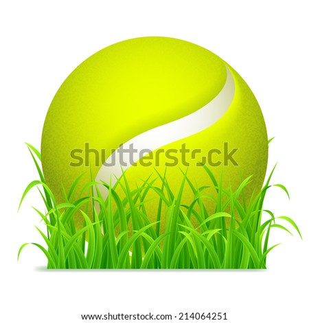 Tennis ball on green grass.