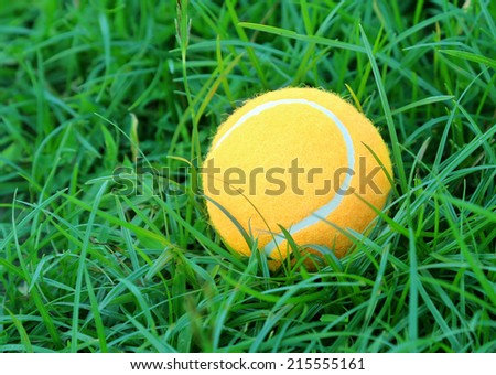 Tennis ball on green grass surface
