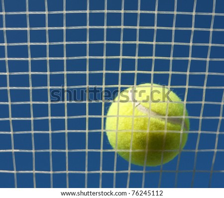 Tennis Ball on Racket Strings, focus on the strings - stock photo