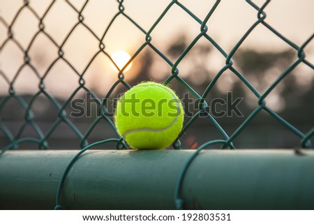 Tennis Ball on the Court Close Up at Sunset