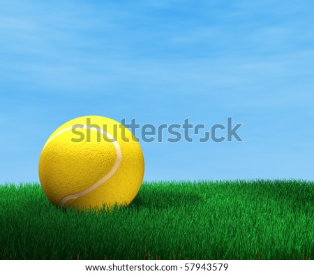 tennis ball on the grass