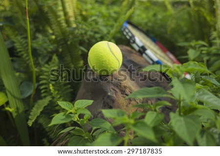 Tennis ball on top of a rock. Concept of green and healthy sport - stock photo