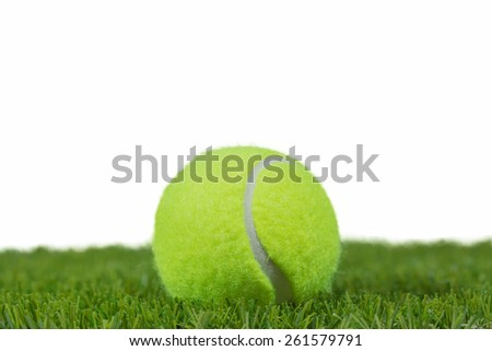 Tennisball in the Green grass
