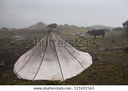 Tent of nomads in Dolpo region, Nepal - stock photo