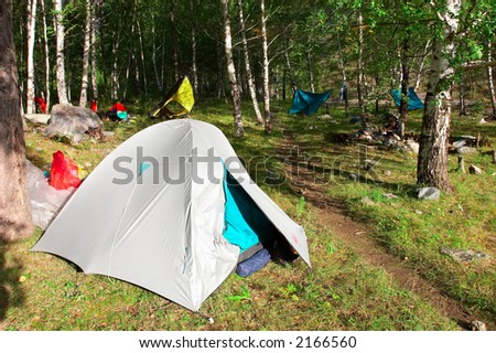 Tents in the woods. Altay. Russia. - stock photo