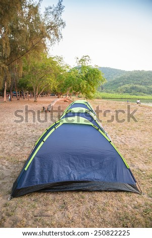 Tents on sea beach and pine forest - stock photo