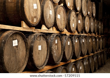 Tequila to process mature - stock photo