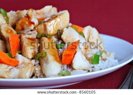 Teriyaki Chicken and Rice - stock photo