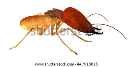 Termite Isoptera Isolated on White Side View 3d Render Illustration