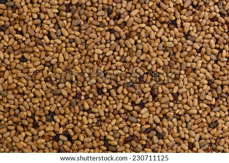 Termite Pellets - stock photo
