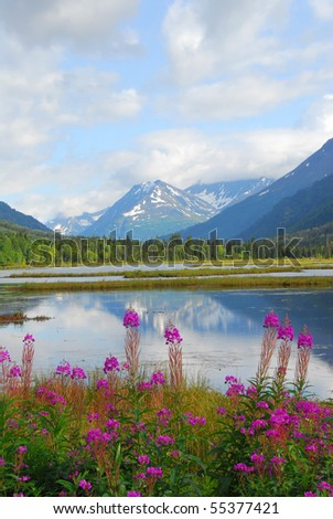 Tern Lake on the Kenai peninsula in Alaska - stock photo