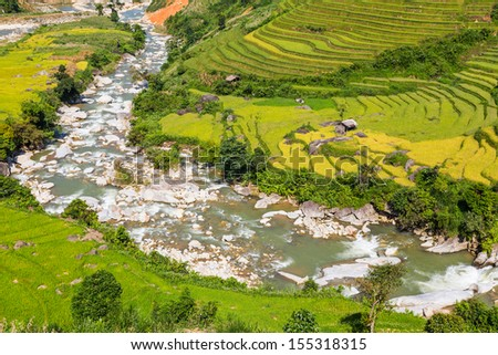 Terrace rice field and mountain view, Sapa, Vietnam