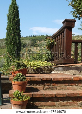 terrace with the view on vineyards and an olive groves in Tuscany - stock photo