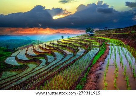 Terraced Paddy Field in Mae-Jam Village , Chaingmai Province , Thailand