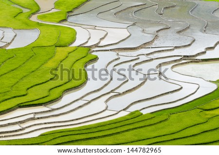 Terraced rice field in water season in Mu Cang Chai, Yen Bai province, Vietnam - stock photo