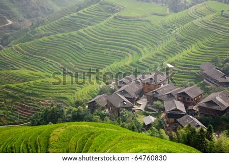 terraces and village - stock photo