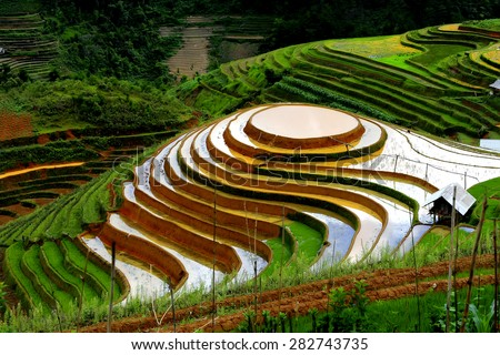 terraces in the hills - stock photo