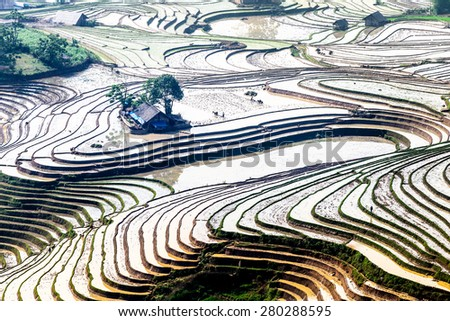 Terreced fields viewed from a mountain peak in the water filling season. Location: Y Ty, Lao Cai, Vietnam - stock photo