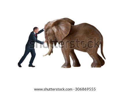 test of strength concept businessman pushing against an elephant isolated