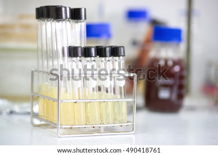 Test tube for bacteria culture