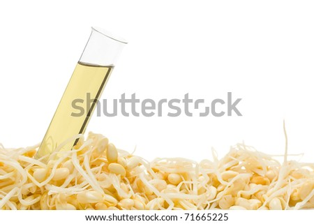 Test tube with bio fuel from soy bean sprouts - stock photo