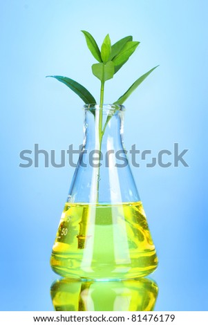 test tube with plants on blue background - stock photo