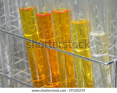 test tubes lined up in a rack containing coloured fractions taken from a column chromatography separation