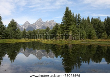 Teton Mountains and forest reflecting in water - stock photo
