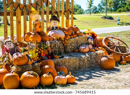 Texas fall autumn rustic hill country Halloween landscape scene with pumpkins and scarecrow