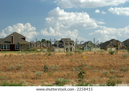 Texas houses - stock photo