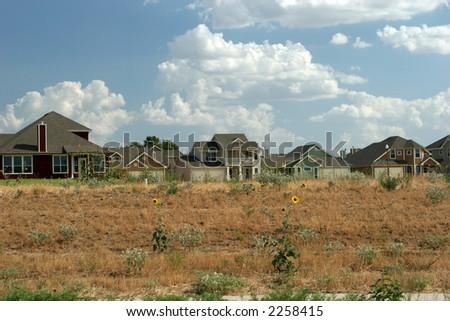 Texas houses - stock photo