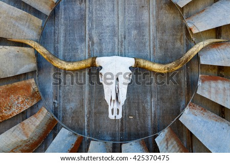 Texas longhorn skull and windmill blade on the side of a hill country barn.