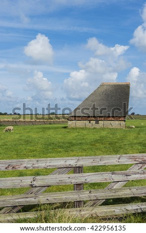 Texel, The Netherlands - August 23, 2012: Barn with meadow and sheep on the Wadden island.