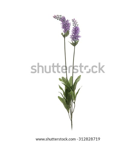 textile lavender flower isolated on a white - stock photo