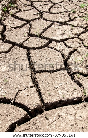 Texture, background, desert, wilderness, waste, sands, wilds, sahara. texture of dry land. Dry cracked earth background. land with dry cracked ground. Land with dry and cracked ground.