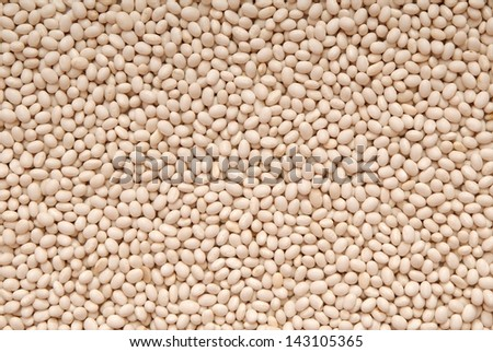 Texture background is out of white beans.