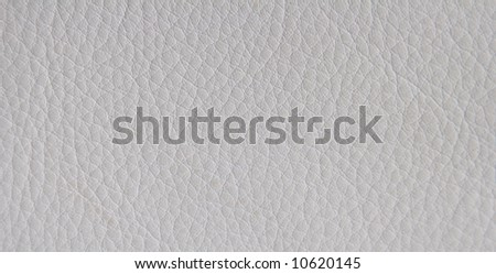 Texture Background White Expensive Leather Material